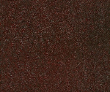 CORIUM PIEMONTE VINO leather flooring by GRANORTE