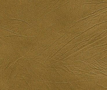 CORIUM CALABRIA CANNELLA leather flooring by GRANORTE